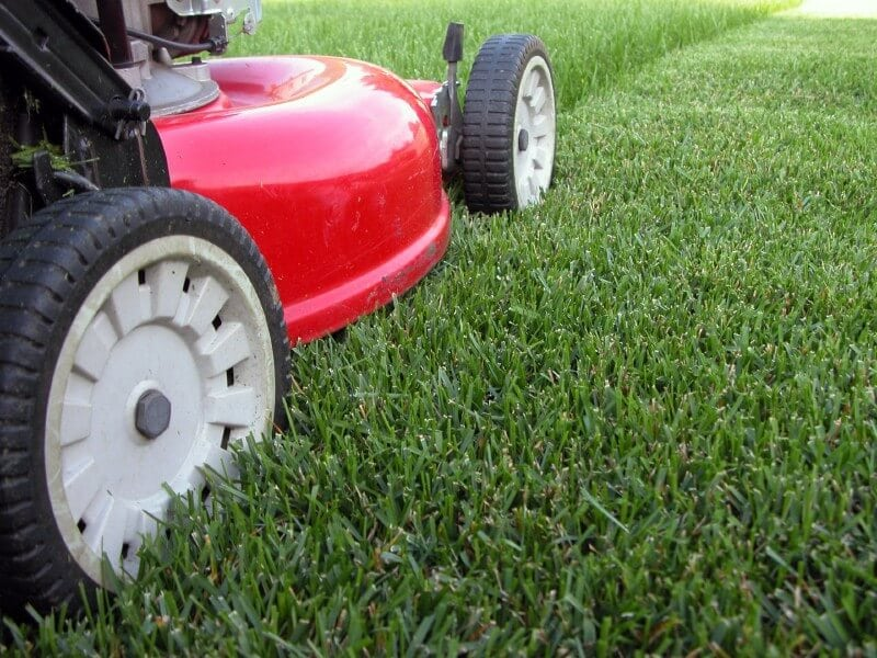 Orlando Lawn Care Web Design